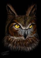 Great-Horned Owl by Koyuki-Shirai
