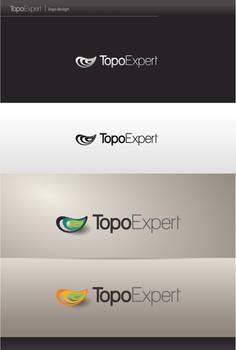 TopoExpert