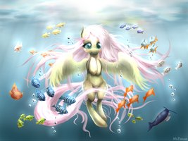 Mlp  Aquarium By Awsdemlp-d64as16 by nightmaremoon123234