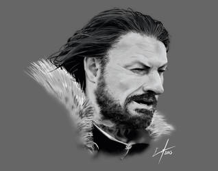 Eddard Stark by Megarcaron