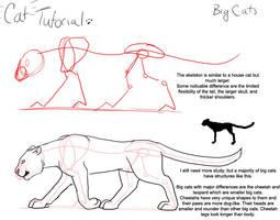 Cat Tutorial: Big Cat