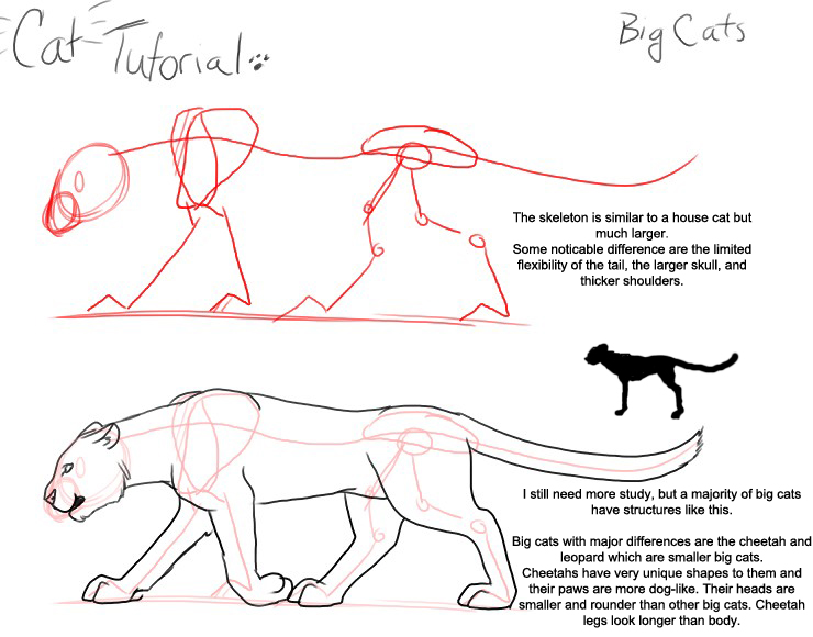 Cat Tutorial: Big Cat by modesty