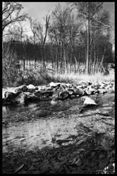 The Hidden Waters pt. 4 by PinEyedGirl