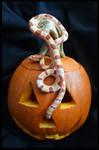 Cooper and His Pumpkin by PinEyedGirl