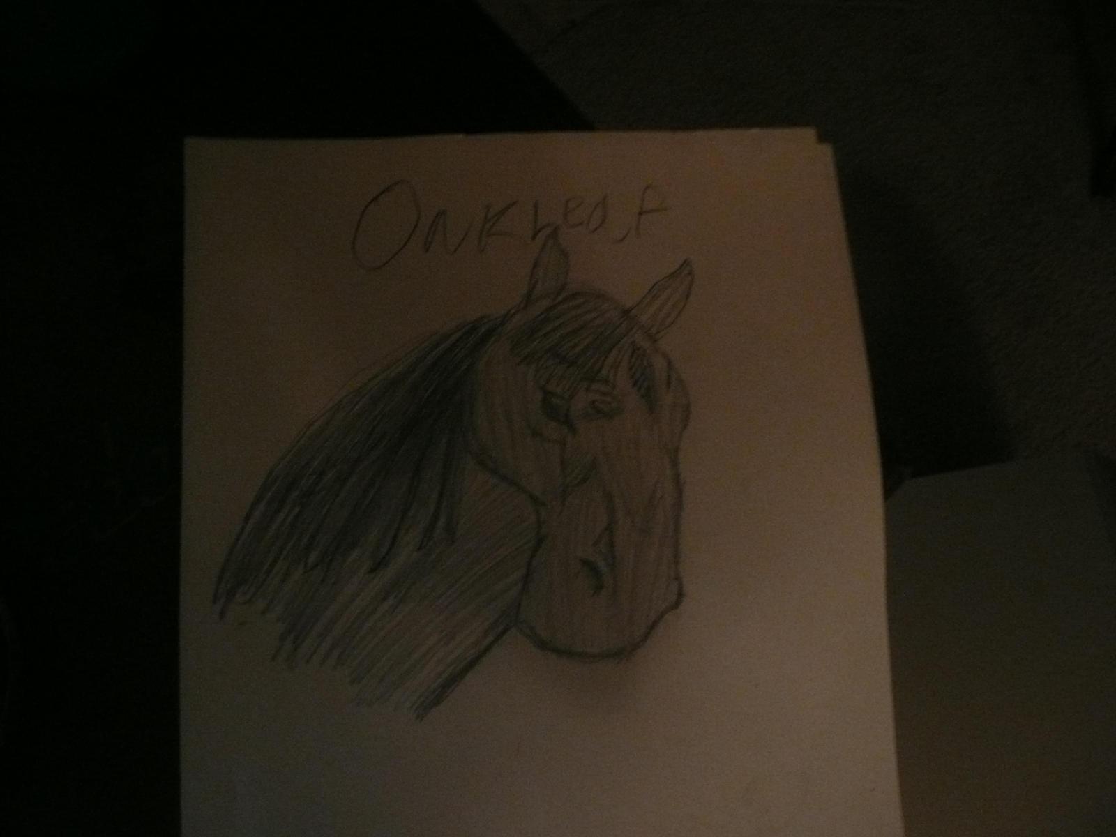 Oakleaf by Lurkassa