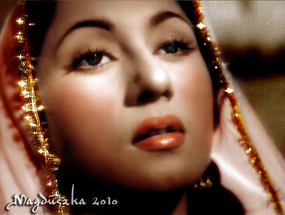 Begum Mumtaz Jehan Dehlavi Net Worth
