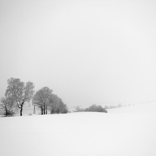 white silence XI by indojo