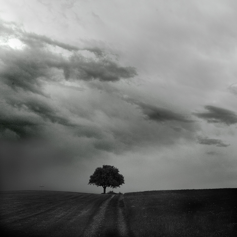 dark morning II by indojo