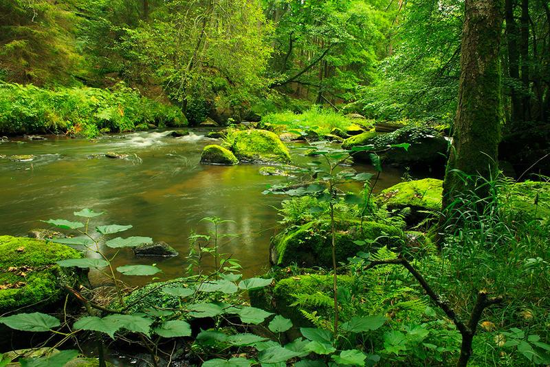 green secret place by indojo