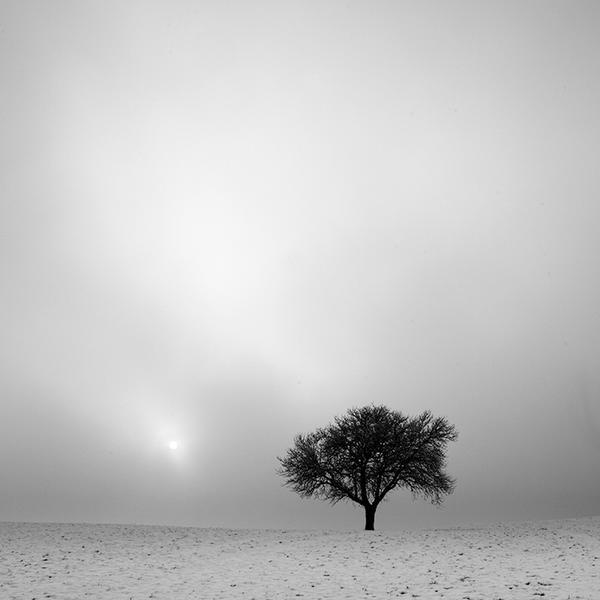 wintertime again by indojo