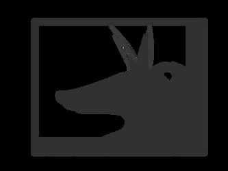 greyfox4728 by greyfox4728