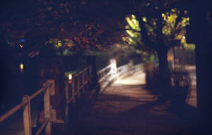 October Night IX by ionWill