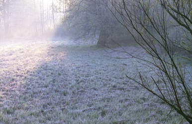 Silent Frost