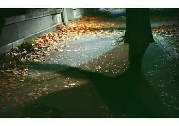 autumnal impressions