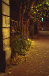 secrets of backstreets by ionWill