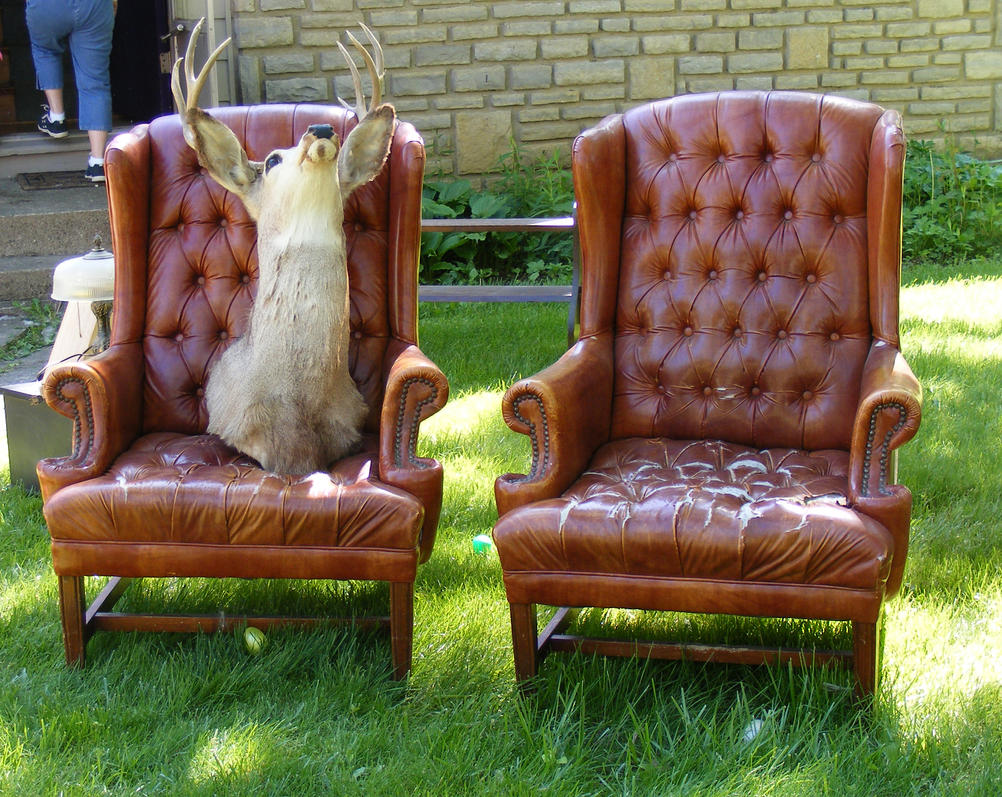 Good Weird Deer Head In A Chair 1 By OsorrisStock ...
