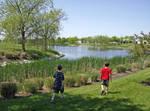 Landscape at Mill Run 1