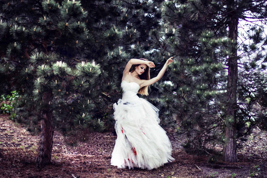 Dancing trees by halucynowa