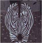 Black Paper Zebra