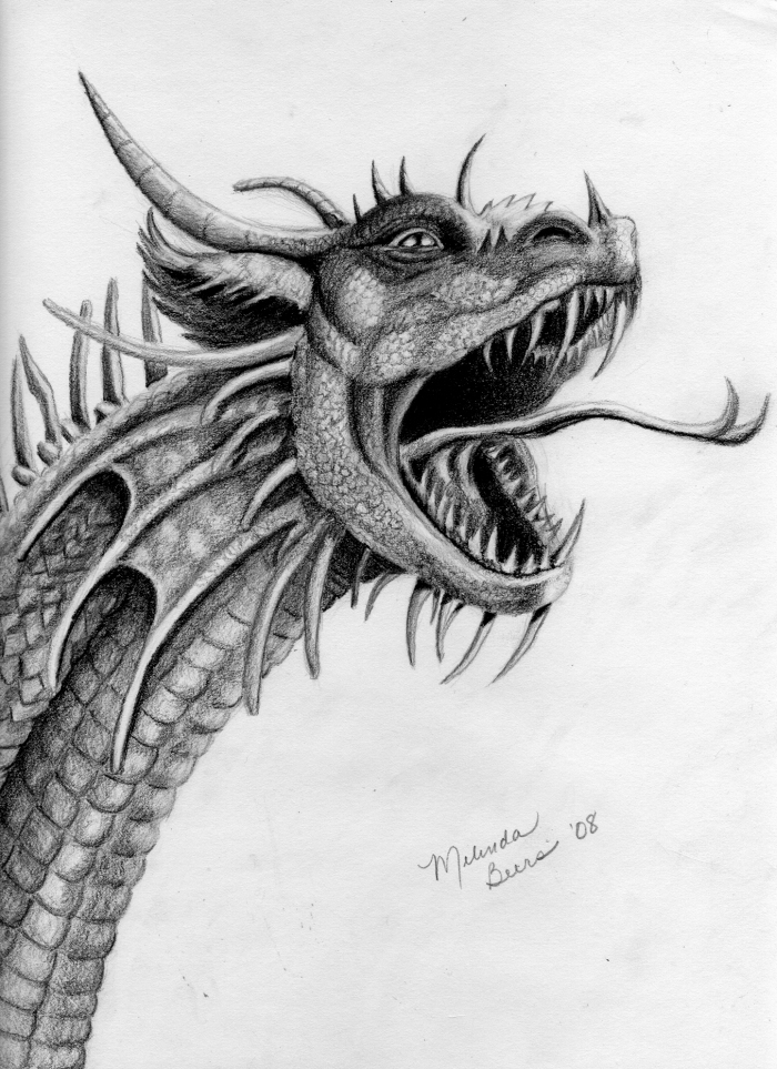 Dragon in pencil by Mindsue on DeviantArt
