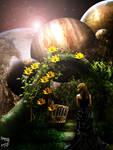 The Moon Flower