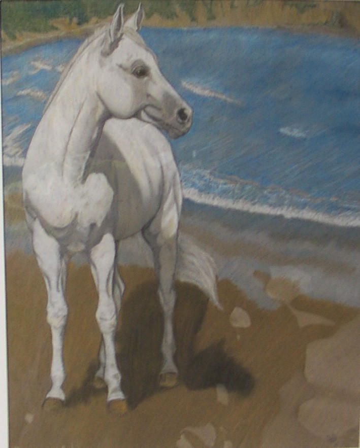 White stallion on beach by Rikanythe