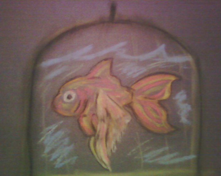 I am but a fish in a cage by lost in your world12 on for What kind of fish am i
