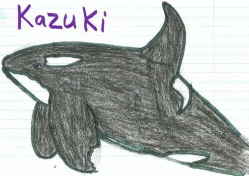 .:1:. Orca Contest, 2006