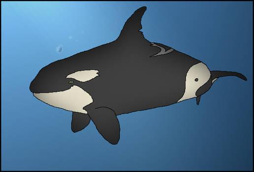 .:2:. Orca Contest, 2006