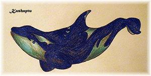 .:5:. Orca Contest, 2006