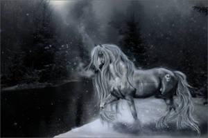 Winter Wonderland by SkysTheLimitStudio
