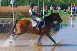 Holly Hill Horse Trials 4