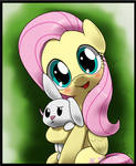 fluttershy and bunny angel