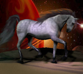 Universal Unicorn