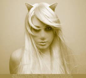Taemela - Feline by snowraevyn