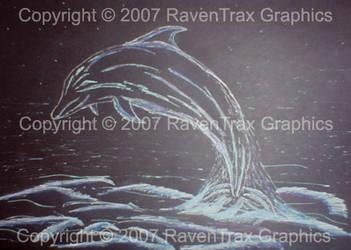 Dolphin Sketch by snowraevyn