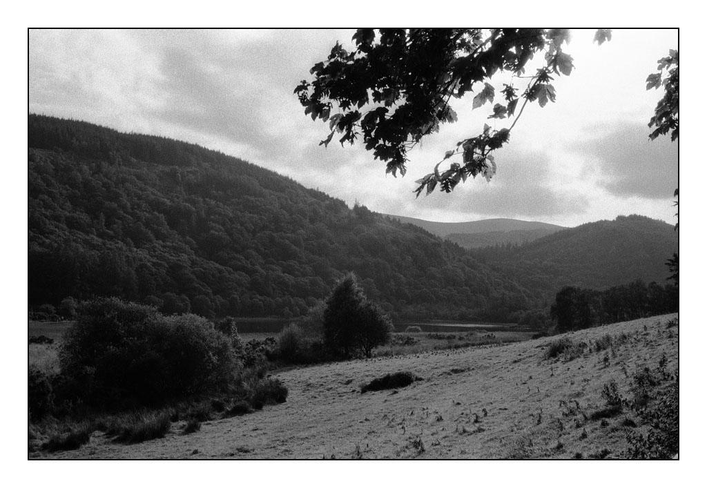 Glendalough by ash