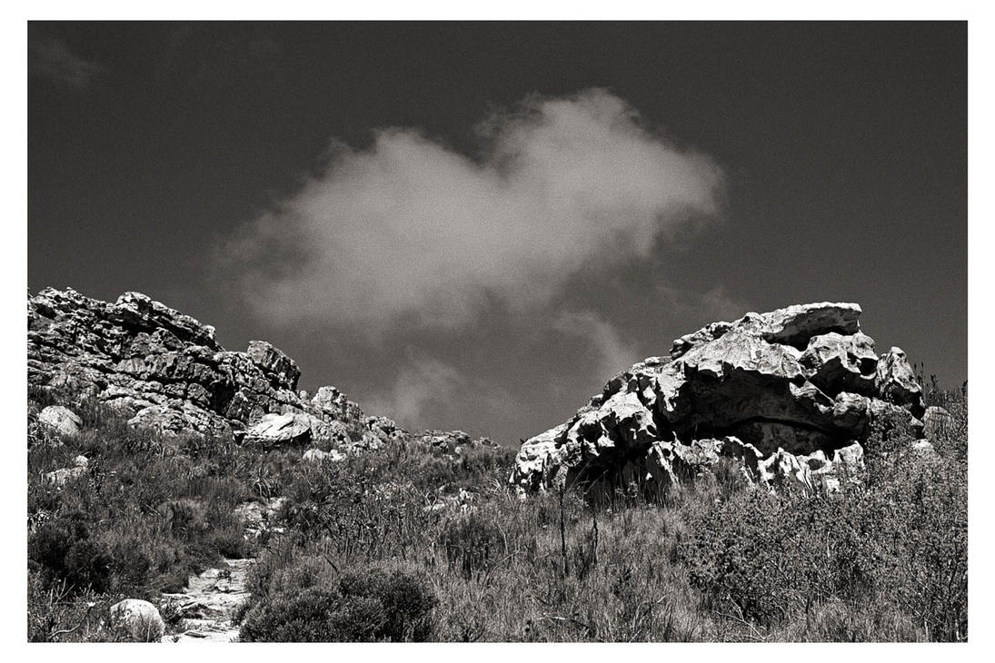 Silvermine Two by ash