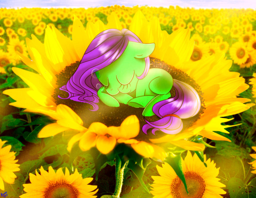 Good morning flower child by kyle23emma on deviantart good morning flower child by kyle23emma izmirmasajfo