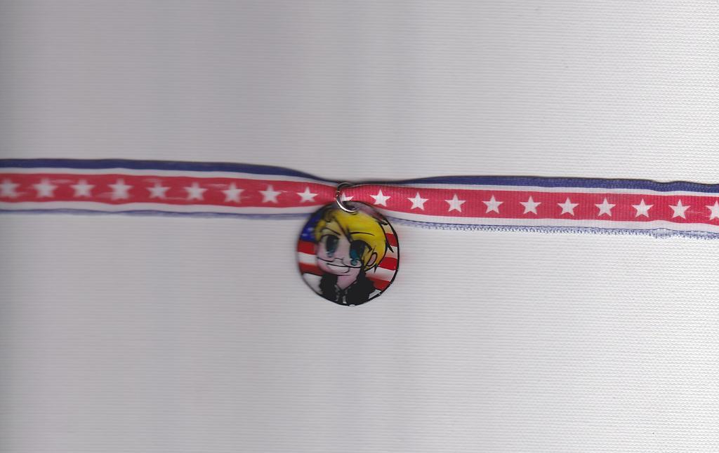 America Necklace by DinosaurMotel