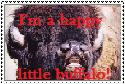 Happy Buffalo Stamp by zybynarx