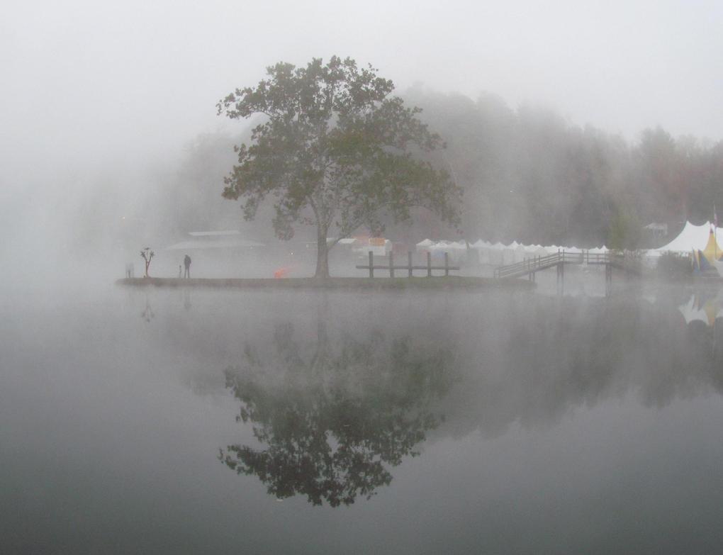 Morning Fog Lone Tree at Leaf by WriteOnRed