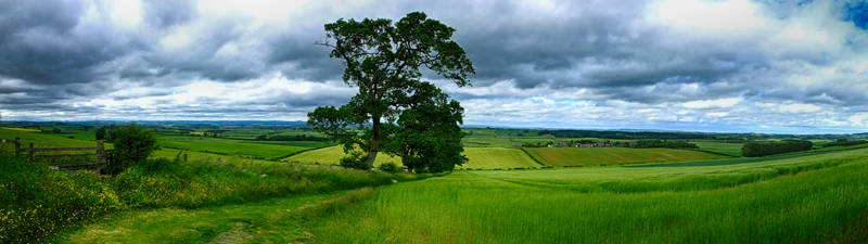 Flodden Panoramic by M-Hutcheson