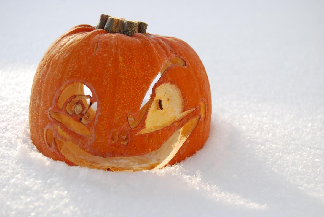 Snow Pumpkin by anuminis