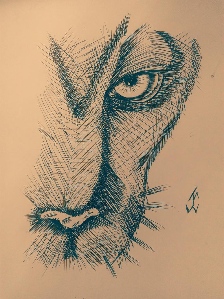 AnimalsLion by jcreduro