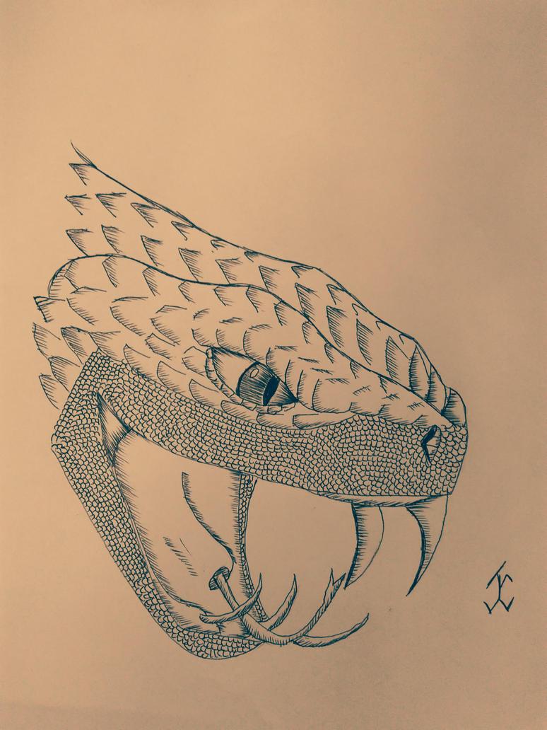 AnimalsSnake02 by jcreduro