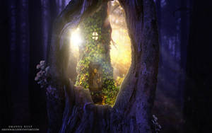 Portal to the Fairy World