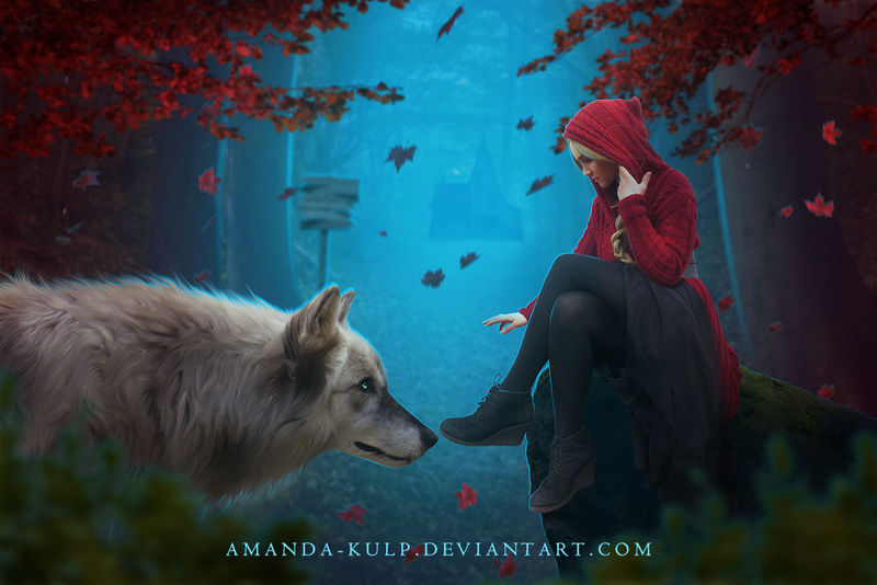 The Wolf's Hood by Amanda-Kulp