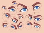 Eyes Study by RaikaiRan