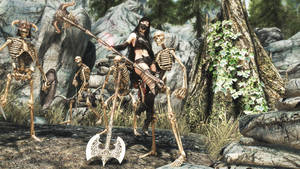 The Elder Scrolls V  Skyrim Special Edition Screen